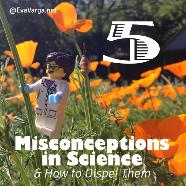 5 Misconceptions in Science & How to Dispel Them @EvaVarga.net