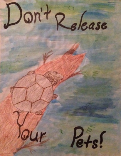 Don't Release