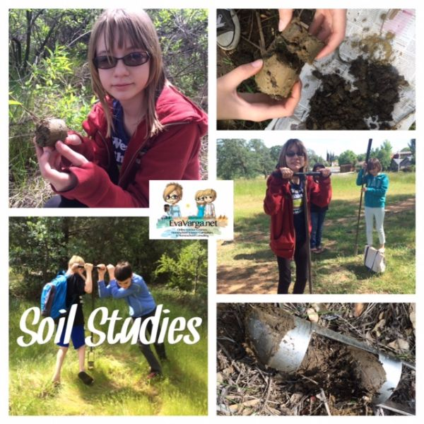 STEM Club: Let's Get Dirty (Soil Ecology) @EvaVarga.net
