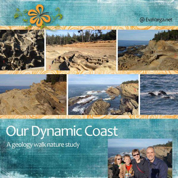Our Dynamic Coast