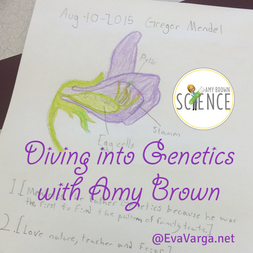 Diving into Genetics with Amy Brown @EvaVarga.net