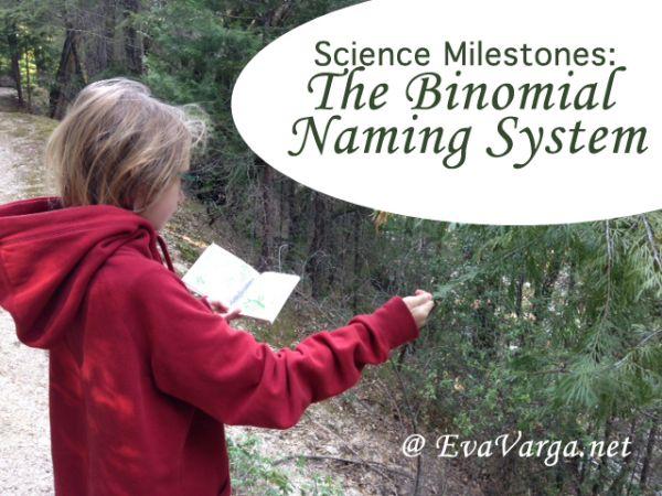 binomial naming system