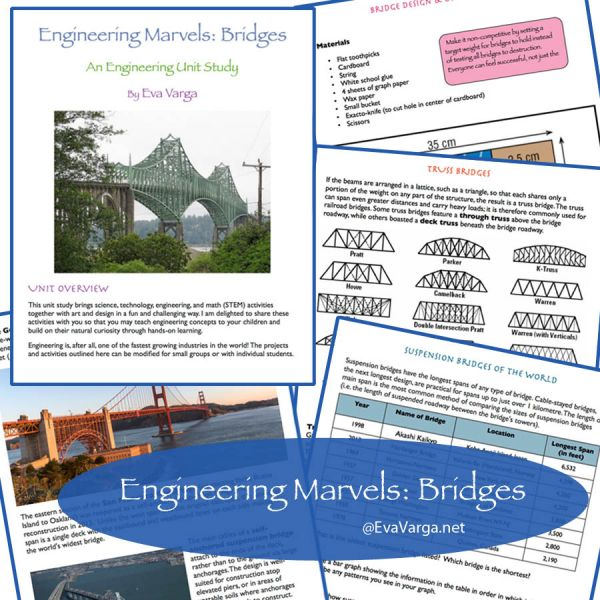 Engineering Marvels: Bridges
