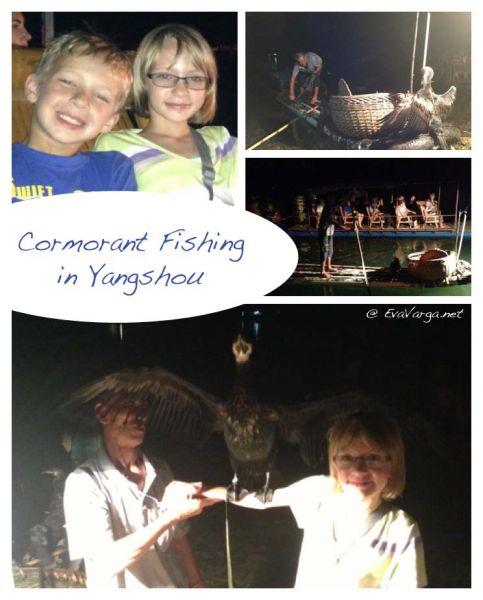 yangshou cormorant fishing