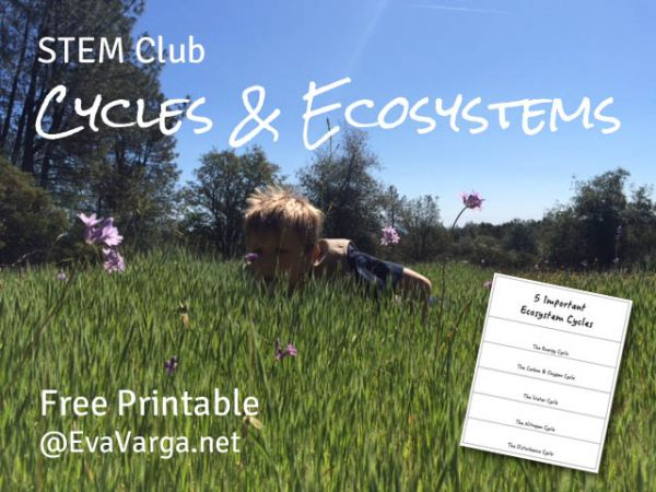 STEM Club: Cycles & Ecosystems w/free printable @EvaVarga.net