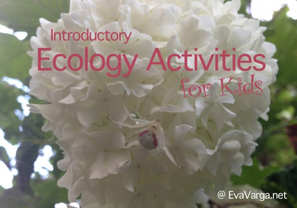 ecology lessons for kids