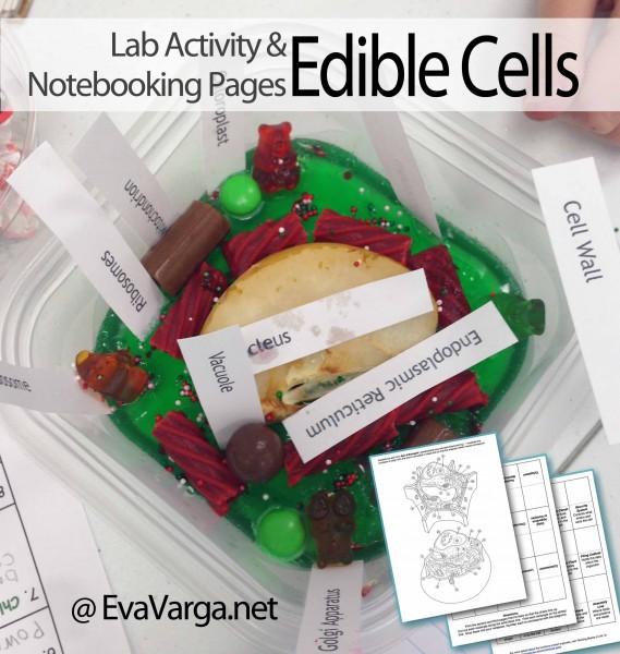 edible cells