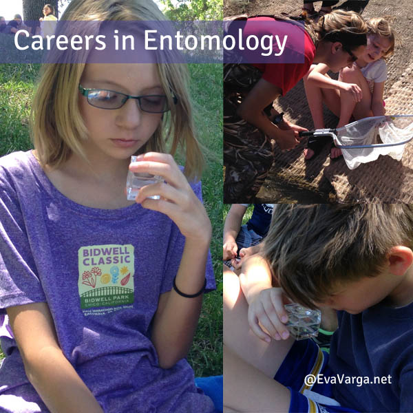 entomology careers entomology scientist resume