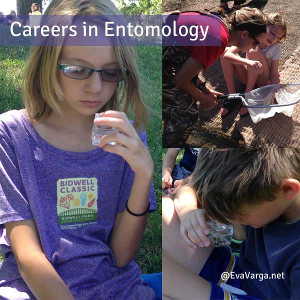 entomologycareers