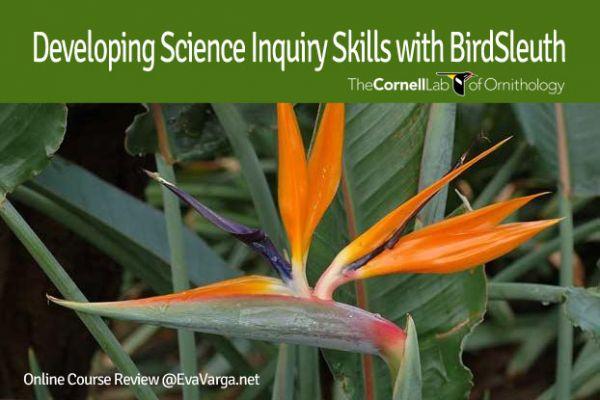 inquiry-skills-birdsleuth