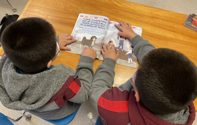twin emerging bilingual boys reading a book together