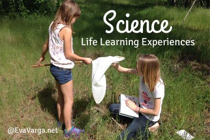 lifelearingscience