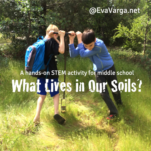 STEM Club: What Lives in Our Soils @EvaVarga.net
