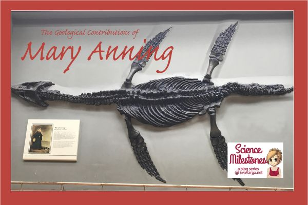 image of Mary Anning's Plesiosaurus fossil discovery