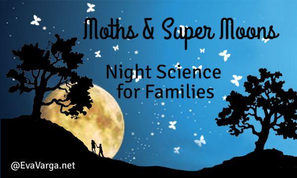moths_moons