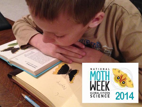 mothweek