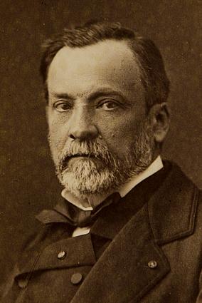 Science Milestones: Louis Pasteur @EvaVarga.net