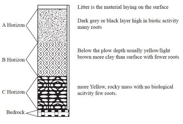 diagram of soil profile wiring library. Black Bedroom Furniture Sets. Home Design Ideas
