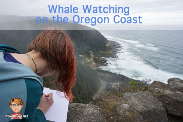 image of young girl near an ocean side cliff journaling